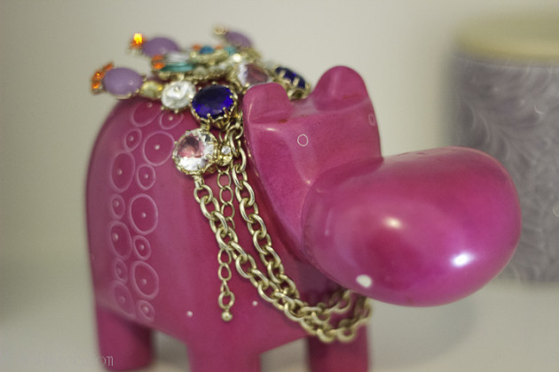 hippo-1
